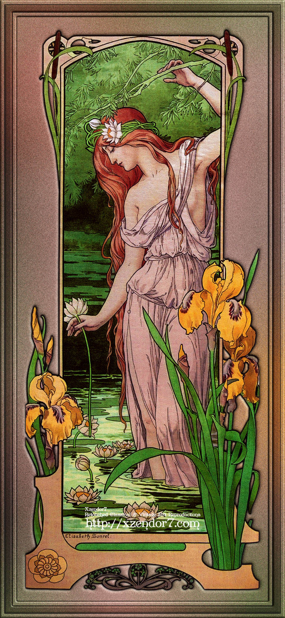 Flowers Of Water by Élisabeth Sonrel